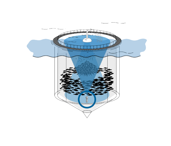 An illustration showing a fish farming cage with CageEye hydroacoustics equipment mounted inside.